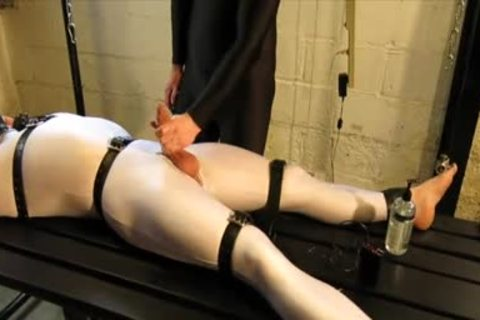 Our Live-in Pup Zathin Loooves To Be Tickled type-of. So We Put Him In smth Stretchy, thonged Him Down, And Decided To watch How Much that guy Could Take! In Part 1, We Added A Sound-activated Electro Plug Just To Keep Things Interesting. Here In P