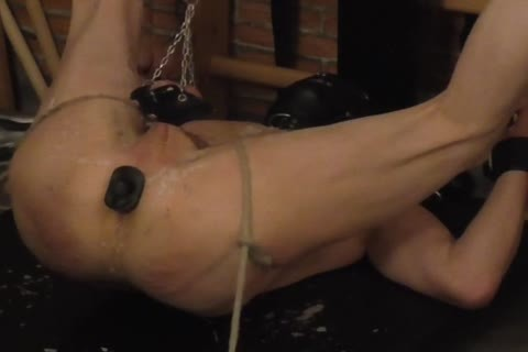 dom: Sadist52   serf: MasoFun During A 4 H Session The serf Learned To Feel The Difference betwixt Whip, Flogger, Crop And Cane. that lad Ist Treated With nasty Wax, Elektroplug, Ginger, Penisplug. that lad is Suspended Upside Down, His