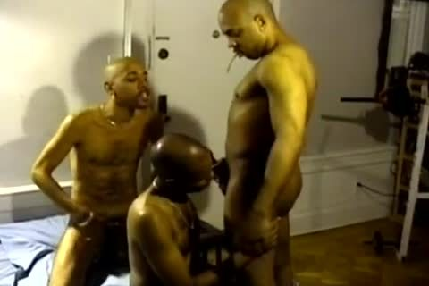 dark And In The Ghetto homosexual males engulf Hard penises