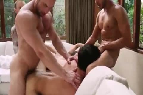 Breed That pooper - bare bunch sex 5