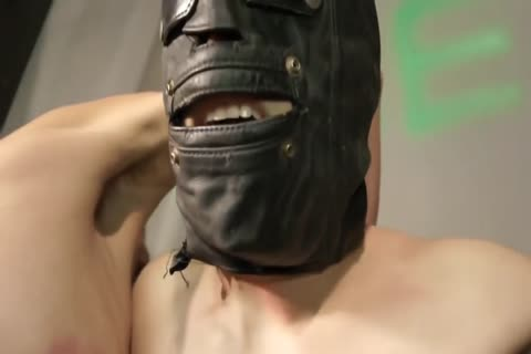 sadomasochism lascivious villein lad fastened Up And Punished