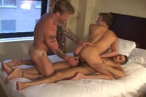 Jarod steel & Chris Neal & Tony Serrano