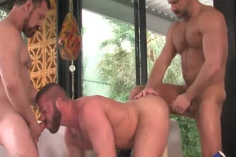 Package: Hunter Marx, Dirk Caber And Max Sargent