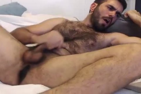 hairy Bear Wanks And spooge