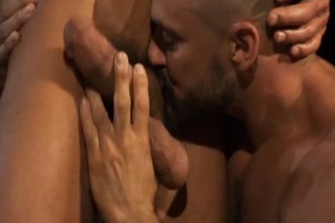 Hung: The most nice Of David Anthony