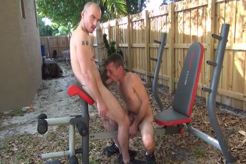 Arsehole Smashing In The Yard- Factory Clip