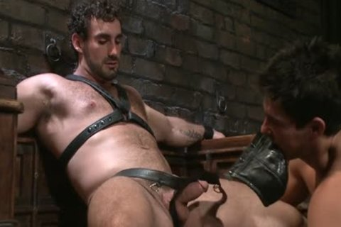 take up with the tongue My Boots, engulf My 10-Pounder, take up with the tongue My wazoo !!!