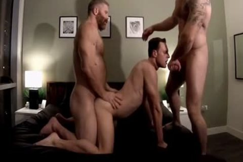 tight Bears nail willing penis