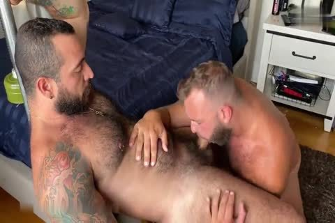 Two pumped up Bears banging Nonstop