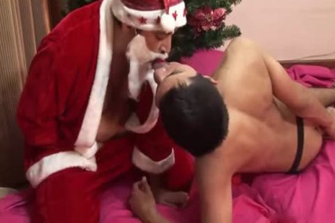 An ass toy For Christmas